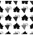 grape berry leaf pattern vector image