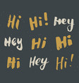 hey and hi signs lettering set hand drawn vector image vector image