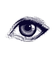 Human etched eye vector image vector image
