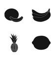melon banana pineapple lemonfruits set vector image