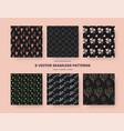 set botanical seamless patterns on black vector image vector image