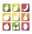 set of fruits flat style design lemon grape vector image