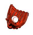brown baseball glove and ball vector image
