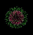 beautiful firework couple romantic salute vector image
