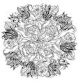 Black and white Flower roses vector image