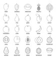 fruits icons set outline style vector image