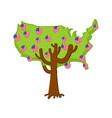 patriotic apple tree usa map apples america flag vector image vector image