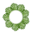 philodendron monstera leaf banner wreath vector image