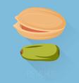pistachios icon vector image vector image