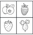StrawberryRaspberriesBlueberriesGooseberry vector image
