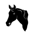 stylized horse head silhouette with a beautiful vector image vector image