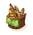 watercolor fresh bread basket vector image
