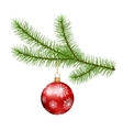 Christmas branch hanging Christmas ball vector image
