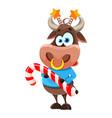 cute bull symbol chinese new year 2021 vector image vector image