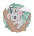 koala and mother in tree animal tree and leave vector image vector image