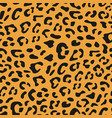 seamless leopard pattern design animal tile print vector image vector image