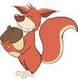 Squirrel with an acorn cartoon vector image