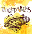 vegetable background vector image