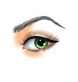 Eye make up vector image