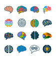 human brain collection creative silhouettes of vector image vector image