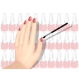 nail polish a nd hand vector image vector image
