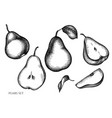 set hand drawn black and white pears vector image
