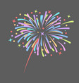 fireworks rocket explodes in colored stars vector image vector image