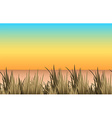 Nature scene with sand and grass vector image