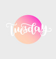 tuesday handwriting font by calligraphy vector image vector image