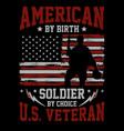 american birth vector image