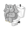 elephant sitting on the toilet cartoon vector image