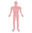 freedom word man figure vector image