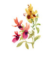 hand drawn pink and yellow flowers isolated on vector image