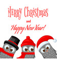 owls in santa claus hat and scarf postcard for vector image vector image