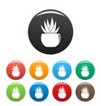 round pot aloe icons set color vector image vector image