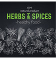 seamless border herbs and spices vector image vector image