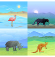 animals background set vector image