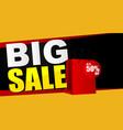 big sale banner background vector image