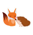 cute fox and hedgehod animals cartoon isolated vector image vector image