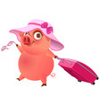 fun pig in pink hat with suitcase is on vacation vector image