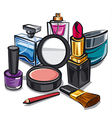 makeup and perfumes vector image vector image