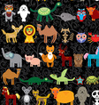Set of funny cartoon animals character on black vector image vector image