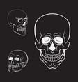 skull set white skulls collection vector image