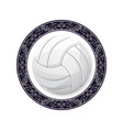 volleyball with circle pattern vector image vector image