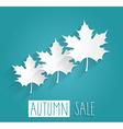 Autumn sale icon vector image