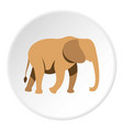 elephant icon circle vector image vector image