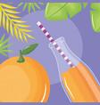fresh orange juice fruit in botttle with straw in vector image