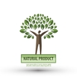 nature logo design template ecology or bio icon vector image vector image