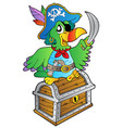 pirate parrot on treasure chest vector image vector image