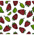 raspberry and mint leaves doodle style vector image vector image